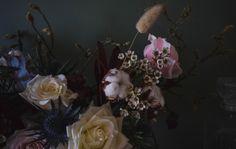 Scottish Flowers, Second Weddings, Flower Farm, Daisy, Bouquet, Floral, Painting, Art, Art Background
