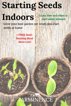 When and How to Start Seeds Indoors Learn how and when to start seeds inside. Grow vigorous vegetables, herbs and flowers by starting your own seeds. FREE seed-starting must haves checklist! Planting Flowers From Seeds, Starting Plants From Seeds, Starting Seeds Indoors, Starting A Garden, Seed Starting, Planting Seeds, Herb Seeds, Garden Seeds, When To Plant Seeds
