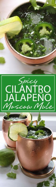 Spicy Cilantro Moscow Mule | A refreshing Moscow Mule with spicy and sweet flavoring. Jalapeño and Cilantro make a ULTIMATE cocktail for…