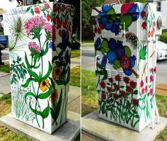 Public art - Botanical illustration mural painted on electrical box in Ithaca, NY, by Kellie Cox. 21 boxes  project