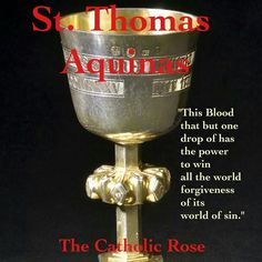 St. Thomas Aquinas - this is a beautiful line from the hymn Adore te Devote - Godhead Here in Hiding