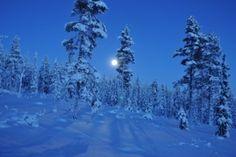 Månelyst på Gammelsetra
