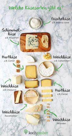 Käse ist nicht gleich Käse Welche Käsesorten gibt es Infografik