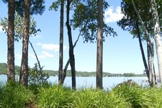 Amazing Northern Michigan Homes: Walloon Lake Cottage - Northern Michigan's News Leader