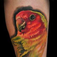 amazing parrot tattoo