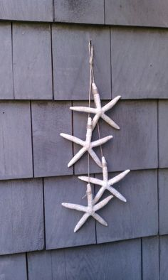 Hanging starfish. I actually only used 3. Still cute and only took a few minutes to make. Hanging next to the front door!