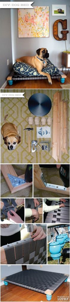 DIY Dog Bed | lovepetsdiy | bedTruman
