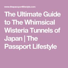 The Ultimate Guide to The Whimsical Wisteria Tunnels of Japan   The Passport Lifestyle