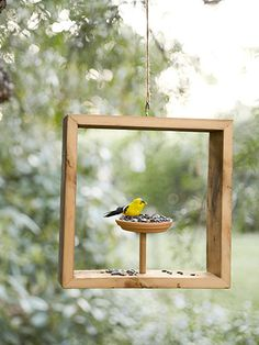"Foto ""pinnata"" da una nostra lettrice, blogger di My Home Restyling. Too cute! How to make a DIY shadow-box bird feeder for your feathered friends."