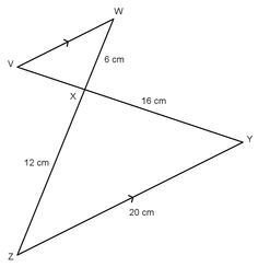 Can you find x? A geometry question from the 2015 May/June