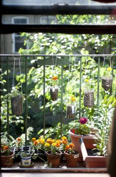Last Sunday morning I woke up with an idea for a project; A garden of bright, colorful flowers that fit on my fire escape. Like most New Yorkers, I live ...