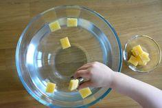 Five Minute Montessori - Sponge and Tong Activity