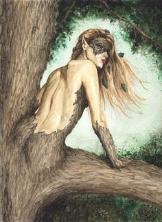 Hamadriad are supernatural creatures that live in trees in Greek mythology. They are a special class of nymphs. Hamadriad born in specific trees and has a very close relationship with the tree which became her residence. If the trees are inhabited dead, then she will die, too. Therefore, Driad and the gods will punish anyone who harm trees.