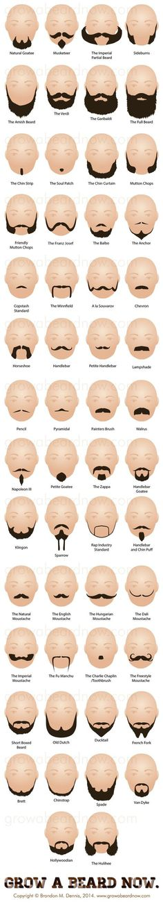 We couldn't resist posting something as informative as this  #infographic about the mustaches and beard styles!