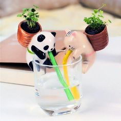 Cute Animal Self Watering Plant Pot Pot material: pottery 4 styles available: Rabbit (Mint) Panda (Basil) Pig (Clover) Cat (Wild strawberry) Includes a ceramic