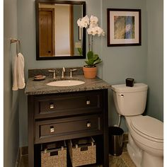 Powder Room Design, Pictures, Remodel, Decor and Ideas - page 4