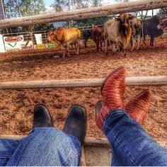 Casais Cute Country Couples, Cute N Country, Country Men, Cute Couples Goals, Country Girls, Country Dates, Country Life, Cowgirl Pictures, Country Senior Pictures