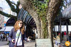 Free Walking Tour Curitiba - A Carol Moreno, do blog Mochilão Trips, nos guiou pelo Centro Histórico de Curitiba, contando a história da cidade, seus marcos, pontos turísticos, museus, igrejas, praças e muitas outras curiosidades.