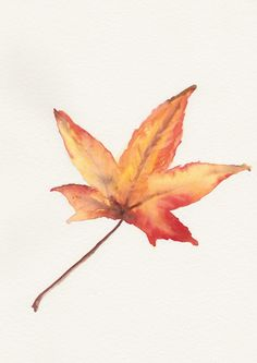 Leaf Original watercolor painting Maple autumn fall foliage leafage still life art by FrancinaMaria on Etsy
