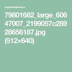 79801682_large_60647007_2199057c28928656187.jpg (512×640)