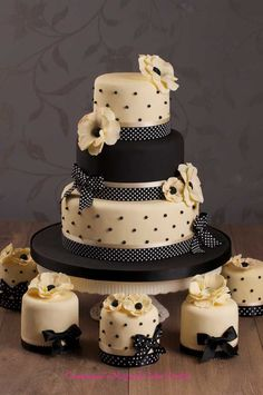 Black & White Cake & Mini Cakes