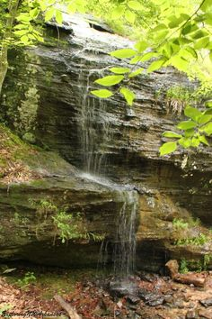Waterfall along the Alum Cove Trail -- via ExploringNWArkansas.com