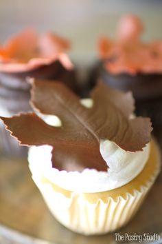 Fall Cupcakes-Daytona Beach, Fl