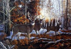 Artist Donald Blakney Unframed Whitetail Deer Art Print Oak Ridge Deer | WildlifePrints.com