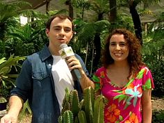 Arte Brasil   Jardinagem - Cactus - Nô figueiredo