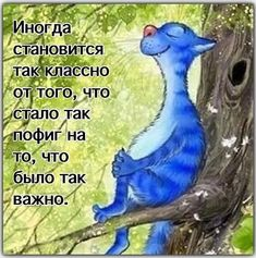 Дневник : LiveInternet - Российский Сервис ОнРFunny Phrases, Funny Quotes, I Love Cats, Crazy Cats, Animal Gato, Image Chat, Funny Expressions, Creation Photo, Gatos Cats