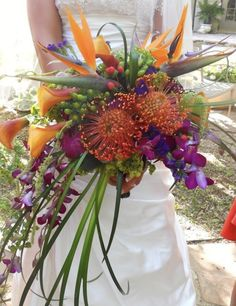 Nautical bouquet, bird of paradise.