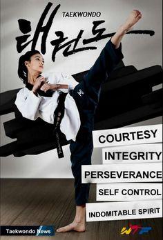 The rules I  live by: Courtesy, Integrity, Perseverance, Self control, Indomitable spirit. Taekwondo