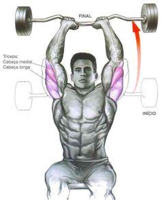 Exercicios De Triceps Bicep And Tricep WorkoutBicep