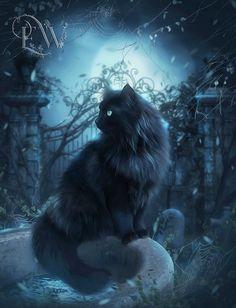 Black Cat print Black Cat art Black cat decor fantasy cat by EnchantedWhispersArt Chat 3d, Art Bleu, Black Cat Art, Black Cats, Long Haired Cats, Cat Decor, Warrior Cats, Blue Art, Wicca