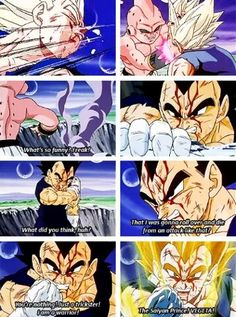 Vegeta, Prince of all Fucking Saiyans. And don't forget it...