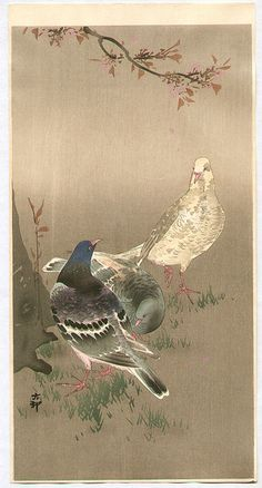 Ohara Koson: Pigeons under Cherry Tree - Early 20th Century