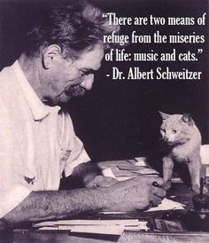 Dr. Albert Schweitzer Was a Wise Man.