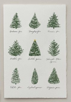 Christmas Card Christmas Tree Card Set Of Holiday Cards Blank Happy New Year Modern Christmas Cards, Christmas Tree Cards, Christmas Art, Winter Christmas, Handmade Christmas, Holiday Cards, Christmas Decorations, Chrismas Cards, Types Of Christmas Trees