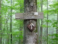 Appalachian trail hike in stokes state forest