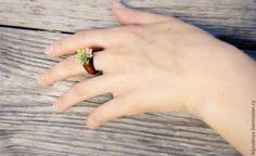 Купить Кольцо деревянное с суккулентами - комбинированный, дерево, деревянное кольцо, деревянное украшение, кольцо из дерева