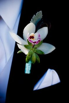 boutonnieres of white orchids and green succulents wrapped in green ribbon all the way to the ends of the stems.