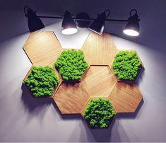 Dębowe panele SkotiWood połączone z drewnianymi ramami. Chrobotek reniferowy tworzy piękną dekoracje w pokoju. Podświetlenie nadaje uroku i głębi. Panele 3D heksagon to świetne rozwiązanie dla najbardziej wymagających klientów. Garden Mural, Moss Wall Art, Garden Makeover, Garden Projects, Wall Lights, Wall Decor, Dom, Flowers, House
