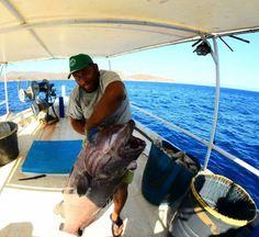 Έλληνας ψαράς στις Οινούσσες: «Αν δεν σταμάταγα θα τον βούλιαζα ή θα τον έκοβα στην μέση»