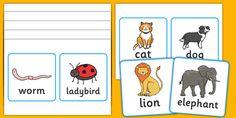 Vertebrates Or Invertebrates Cards