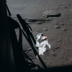 "humanoidhistory: ""February 5, 1971 – Through the window of the Apollo 14 lunar module, astronaut Ed Mitchell snaps this image of Alan Shepard shortly after landing on the Moon. (NASA) """