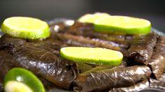Charuto de Folha de Parrera. Pra você que também é um amante da boa gastronomia libanesa, o Plug mostra uma receita, que é pura sofisticação, além de deliciosa: Charuto de Folha de Parrera. http://gshow.globo.com/RPC/Plug/videos/t/edicoes/v/veja-como-preparar-um-charuto-de-folha-de-parrera/4775335/