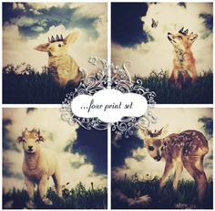 Print Set - Little Prince by ThisYearGirl on Etsy - Discoved this artist last weekend. I WANT these prints! (Wouldn't they be lovely for a nursery?)