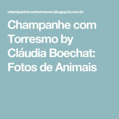 Champanhe com Torresmo by Cláudia Boechat: Fotos de Animais