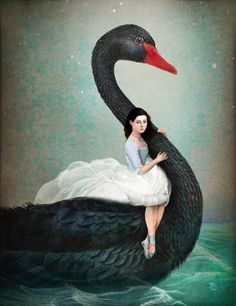 """Black Swan"" Digital Art by Christian Schloe posters, art prints, canvas prints, greeting cards or gallery prints. Find more Digital Art art prints and posters in the ARTFLAKES shop. Vogel Illustration, Illustrator, Magritte, Arte Pop, Pop Surrealism, Wassily Kandinsky, Black Swan, Whimsical Art, Surreal Art"