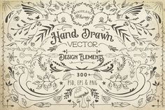 Hand Drawn Vector Design Elements by Eclectic Anthology on Creative Market